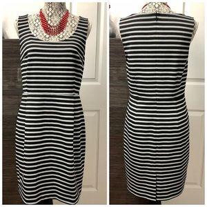 Ann Taylor Loft Black & Gray Stripes Dress